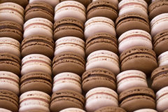 Strawberry and chocolate macarons Stock Images