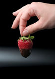 The strawberry in chocolate sauce. In woman's hand at the black background Stock Images