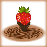 Strawberry with chocolate swirl Royalty Free Stock Images