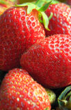 Strawberry close-up Royalty Free Stock Images