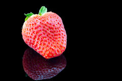 Strawberry  close up on a black background. Reflection Stock Image