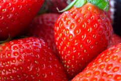 Strawberry close up,Fresh ripe perfect strawberry,wallpaper. Strawberry close up, Fresh ripe perfect strawberry, wallpaper, macro, natural royalty free stock images