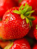 Strawberry close-up macro. Fresh juicy strawberry close-up macro shot Royalty Free Stock Photos