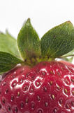 Strawberry. Close up macro shoot isolated in white stock image
