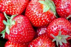 Strawberry close-up Stock Photos