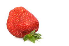 Strawberry Closeup. Food & Drinks - Fruits - Strawberry isolated on white background Stock Photos