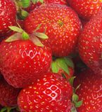 Strawberry closeup Royalty Free Stock Images