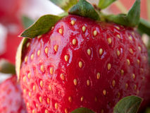 Strawberry closeup Stock Photography