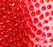 Strawberry Closeup Royalty Free Stock Photos