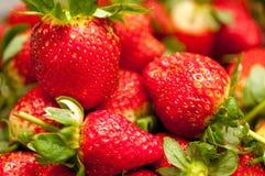 Strawberry closeup stock image