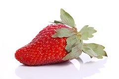 Strawberry. Closeup of single Strawberry fruit isolated against white background Royalty Free Stock Images