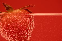 Strawberry in closeup Royalty Free Stock Image