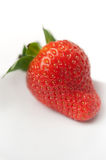 Strawberry Closeup on White Plate Royalty Free Stock Images