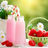 Strawberry cocktail or milkshake in a jar, basket with strawberries on a picnic, healthy food for Breakfast and snacks. Selective focus. Background with copy Stock Image