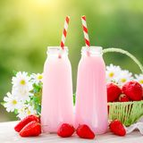 Strawberry cocktail or milkshake in a jar, basket with strawberries on a picnic, healthy food for Breakfast and snacks. Selective focus Stock Images