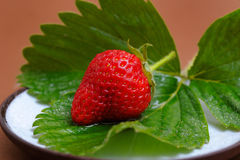 Strawberry on Cofee Saucer Stock Photos