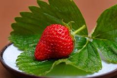 Strawberry on Cofee Saucer Stock Photos