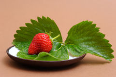 Strawberry on Coffee Saucer Stock Photography