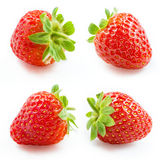 Strawberry. Collection isolated on white Royalty Free Stock Photography