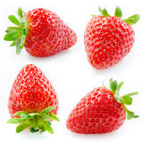 Strawberry. Collection isolated on white Royalty Free Stock Photos