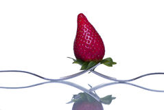 Strawberry concept Stock Photography