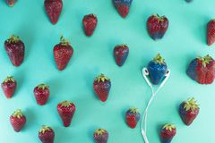 Strawberry Contagious Blues. A strawberry is lisetening to music through earphone... And music is contagious royalty free stock photography