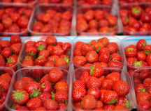 Strawberry Containers. Several containers of strawberry being sold at the local market Royalty Free Stock Images