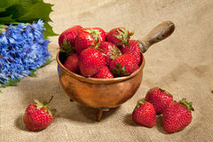 Strawberry and cornflowers Royalty Free Stock Photography