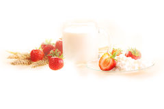 Strawberry, cottage cheese and milk in a transparent mug on a wh. Ite background royalty free stock image