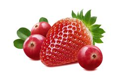 Strawberry and cranberry composition isolated on white background royalty free stock images