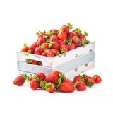 Strawberry in crate Stock Images