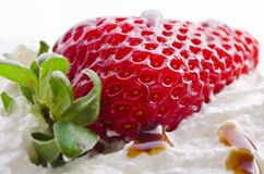 Strawberry with cream Royalty Free Stock Photos