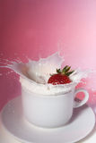 Strawberry in cream Royalty Free Stock Image
