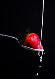 Fruit Food Strawberry Splash Cream Black Back Royalty Free Stock Photo