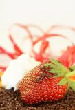 Strawberry with cream and chocolate Stock Images