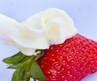 Strawberry And Cream Means Creamy White And Juicy Stock Photos