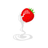 Strawberry and cream. Object on a white background vector illustration
