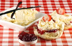 Strawberry cream scone Stock Photography