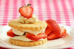 Strawberry and cream shortbread Stock Images
