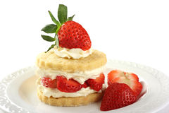 Strawberry and cream shortcake Stock Photos