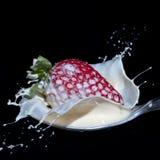 Strawberry and cream splash Royalty Free Stock Images