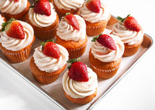 Strawberry Cupcakes Stock Image