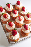 Strawberry Cupcakes. Tray of freshly baked strawberry cupcakes Royalty Free Stock Images