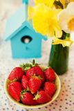 Strawberry with daffodils Royalty Free Stock Image