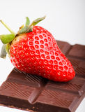 Strawberry on a dark chocolate Stock Photography