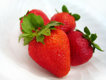 Strawberry delite Stock Photos
