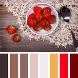 Strawberry dessert palette Stock Photos