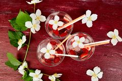 Strawberry detox water with jasmine flower. Summer iced drink or tea. Lemonade with berry. Flavored Water in glasses with Fresh Strawberry. Copy Space. Diet royalty free stock image
