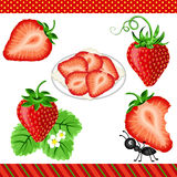 Strawberry Digital Clipart Stock Images