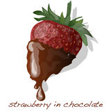 Strawberry dipped in chocolate fondue vector Royalty Free Stock Image